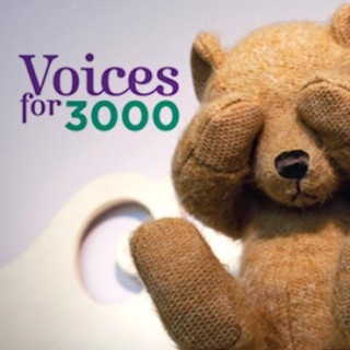 Voices for 3000